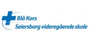 Blå kors - Seiersborg videregående skole
